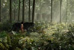 EventGalleryImage_the-jungle-book-003.jpg